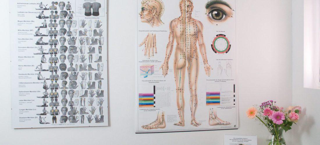 Körperakupunktur - Naturheilpraxis Sarah Fink